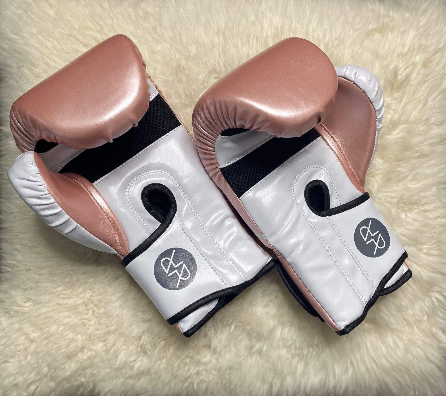 Ruckus Boxing Gloves